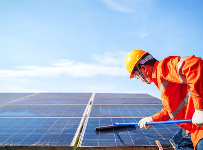 太陽光発電の寿命を延ばすメンテナンス:パネルの洗浄・パネルにかぶさる木々の剪定